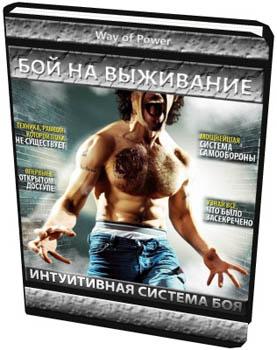 Интуитивная система боя - Константин Шестопалов